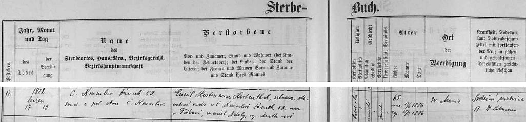 Záznam v českokrumlovské knize zemřelých je psán česky, zmiňuje jeho choť Adélu, roz. Marthovou, jakož i příčinu úmrtí, kterou byla srdeční mrtvice