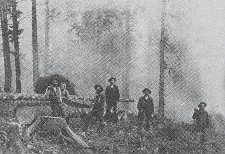 Dřevorubci v lesích u Prášil