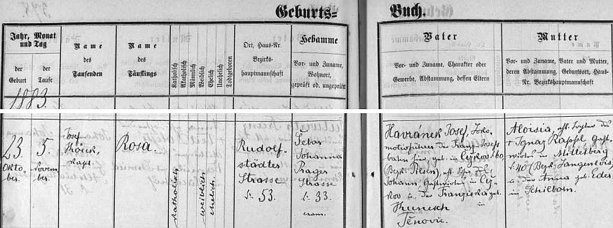 Narodila se, jak dokládá záznam v českobudějovické matrice, v Rudolfovské ulici čp. 53 dne 23. října 1883
