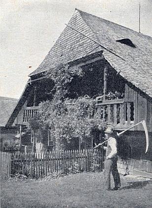 Snad opravdu všechen ze dřeva byl tento šumavský dvorec zvaný Zelzerhof v Hojsově Stráži
