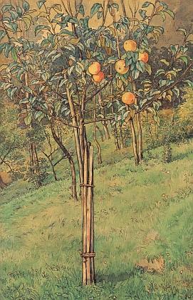 Obraz Jablůňka, akvarelová kresba perem zroku 1910, je dnes vlastnictvím soukromého majitele vLinci