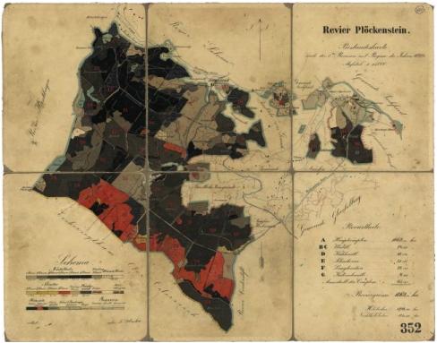 Porostní mapa revíru Plöckenstein z roku 1893, jejímž byl autorem (klikněte na náhled pro digitalizovanou mapu)