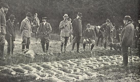 Na schwarzenberských hlubockých honech za přítomnosti knížete Adolfa Josefa vpředu vpravo (šestý zleva vřadě hostů stojí Alfred kníže Windischgrätz) je vrchní lesmistr Heyrovský onen muž vpozadí na koni