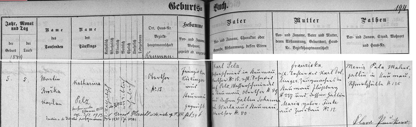 """Záznam českokrumlovské křestní matriky o narození a křtu jeho ženy Kathariny, dcery českokrumlovského nožíře (v originále """"Messerschmied"""") Karla Pelze (ten zdědil nožířské řemeslo po otci) a Franzisky, roz. Dollingerové, jejíž otec Karl Dollinger byl českokrumlovským zbrojířem (v originále """"Zeugmacher"""") - dodatečný přípis informuje i o manželčině vystoupení z římskokatolické církve a o návratu do ní po deseti letech v červnu 1930"""