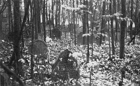 Židovský hřbitov u zámku Kopec