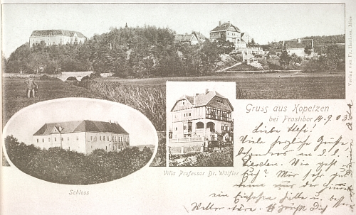 """Pohlednice """"z Kopce"""" u Prostiboře zachycuje i tamní vilu lékaře a lidumila Dr. Leopolda Wölflera (1818-1889), jehož syn Anton Wölfler (1850-1917) se stal profesorem chirurgie v Praze a dvorním radou ((viz k němu Wikipedia) - náhrobek Wölflerů na židovském hřbitově u blízkých Telic (Dollitschen) nese nápis Limen vitae sed non amoris (tj. Hranice života, nikoli však lásky)"""