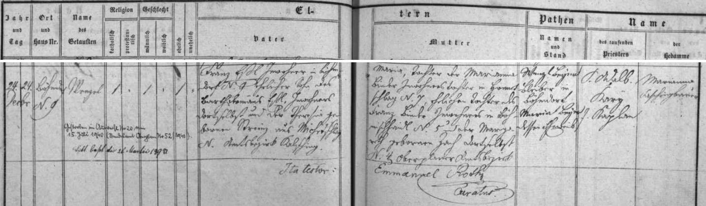 Záznam o narození její babičky z matčiny strany Marie Wagnerové, jejíž dcerou byla i Pauline Eßlová, provd.Pachnerová, matka Reinharda Pachnera