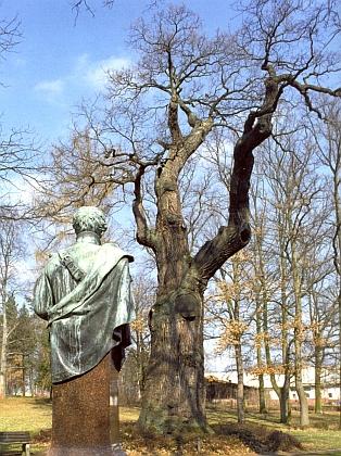 Z pěti urostlých dubů, které Theodor Körner počátkem 19. století opěvoval, stojí už jen jediný a nese básníkovo jméno