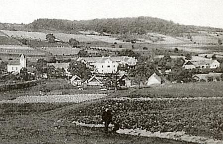 Dnes zcela zaniklá Jedlice s dvorcem Marienhof uprostřed (viz i Therese Gruberová)