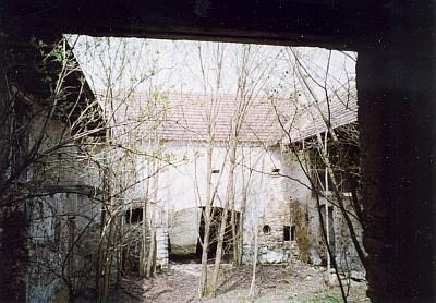 Ve dvoře vierkantu rostly mladé stromy (2005)
