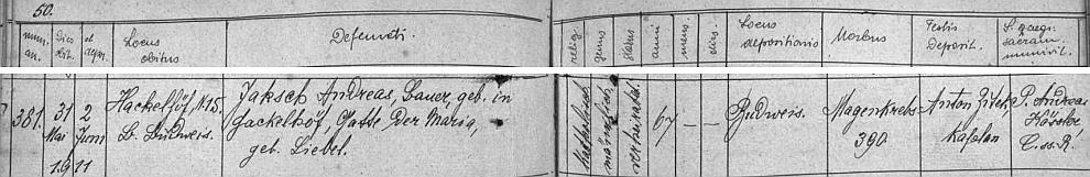 Mezi česky psanými záznamy Knihy zemřelých z Haklových Dvorů nachází se i tento německý zápis o úmrtí jeho otce Andrease Jaksche v květnu roku1911