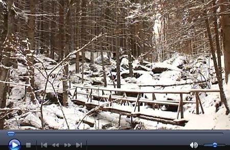 Vydejme se v zimě i jeho Opatskou cestou k vodopádům sv. Wolfganga - jeden z úvodních obrázků odněkud známe: jsou to Stříbrné Hutě, omylem tu ve staré ilustraci uvedené!! (viz Robert Hamerling)