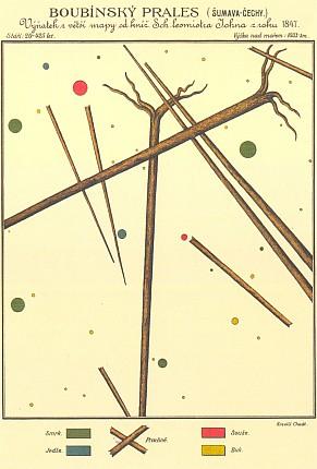Inventura lesního porostu včetně padlých stromů na jedné ploše Boubínského pralesa, jak její výsledek podle mapy Josefa Johna z roku 1847 překreslil Jan Chadt-Ševětínský