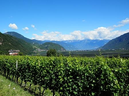 Rodný kraj - údolí u Bolzana na snímku z roku 2017