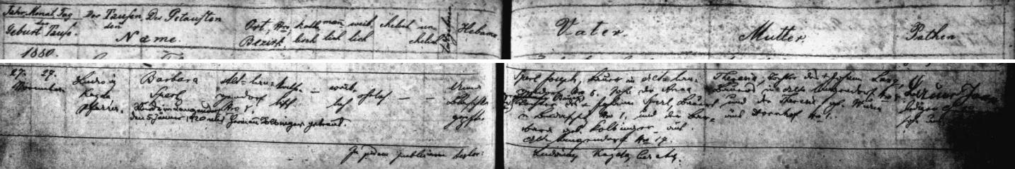 Záznam dlouhoveské křestní matriky o narození její matky Barbary dne 27. listopadu roku 1880 - z údajů o matčině otci vysvítá, že byl synem Barbary, roz. Kolbingerové ze Staré Dlouhé Vsi čp. 17, odkud pocházela i matka Hermanna Kolbingera