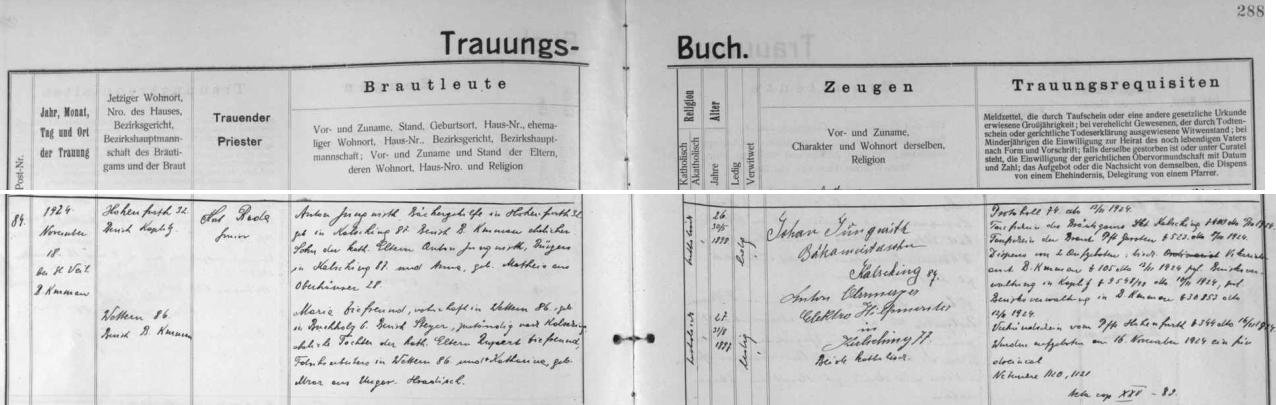Záznam o svatbě jeho rodičů v českokrumlovské matrice: ženich Anton Jungwirth, pekařský pomocník ve Vyšším Brodě čp. 32, se narodil ve Chvalšinách čp. 87 jako syn tamního měšťana Antona Jungwirtha a jeho ženy Anny, roz. Matheisové z Rohů (Oberhäuser), nevěsta Maria Ziefreundová, bytem ve Větřní čp. 86, narozená v hornorakouské osadě Buchholz, okres Steyr, byla pak dcerou Ruperta Ziefreunda, továrního dělníka ve Větřní, a jeho ženy Kathariny, roz. Mrázové z Uherského Hradiště