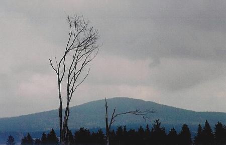 Chlum z Knížecího Stolce na snímku z října 2008