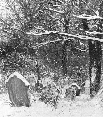 Židovský hřbitov v Dobříši, kde byl pochován, novější náhrobky byly však za německé okupace odvezeny...