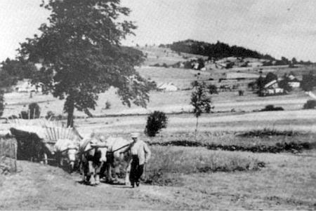 Celkový pohled na Horní Krásnou Horu v pozadí s vrchem Kapraď (1073m n.m.)