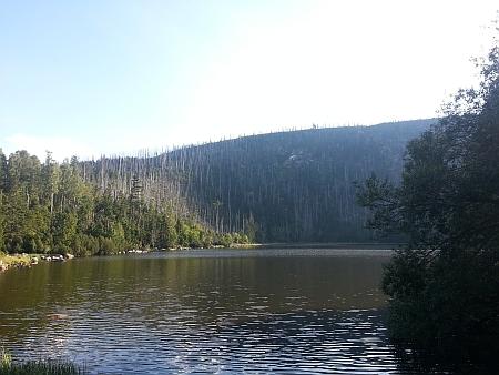 Plešné jezero (2015 a 2017)