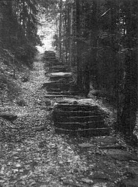 Schody v lese k poutní kapli