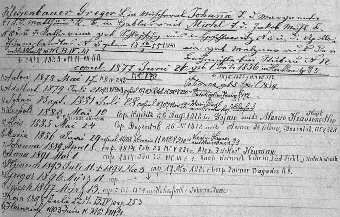 """Dva záznamy z """"rodového katastru"""" farní obce Rožmitál na Šumavě zachycují manželství otcovo i synovo, jakož celkem 20(!) ratolestí, které z obou vzešly - přesvědčivý doklad síly někdejších šumavských selských generací"""