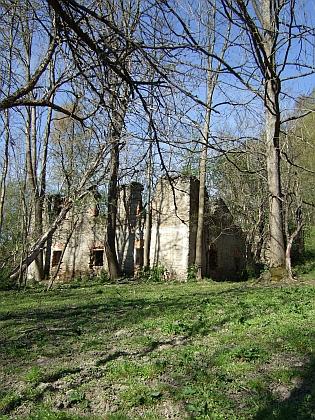 Poslední zbytky někdejší vsi Hora u Rožmitálu na Šumavě
