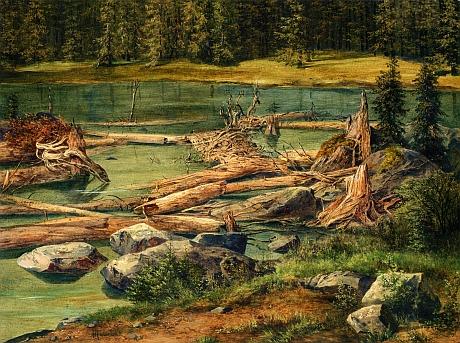 Okolí Plešného jezera je název malířské studie Bedřicha Havránka (1821-1899), která je součástí sbírek Národní galerie v Praze a vznikla v roce 1861