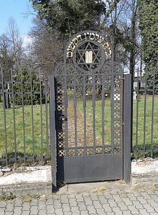 Židovský hřbitov v Českých Budějovicích na snímcích z roku 2015