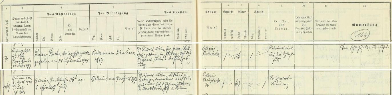 Záznam českobudějovické židovské matriky o jeho i synově úmrtí v roce 1917