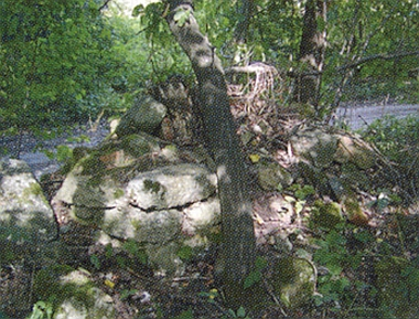 Druhá kaple, ležící na severozápadě někdejší vsi Nižší Hodonice při levé straně silničky do Dobechova - ze zbořeného zdiva roste strom