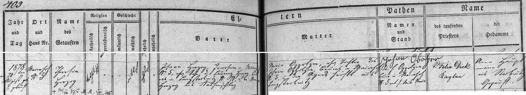 Záznam hornostropnické křestní matriky o narození Theresie Herzogové v Meierhofu (Humenice) s pozdějším přípisem o jejím úmrtí