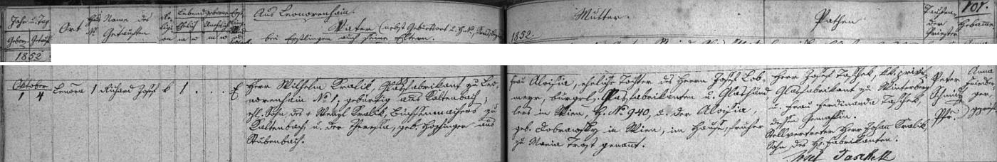 Narodil se podle záznamu v matrice farní obce Horní Vltavice sklářskému podnikateli Wilhelmu Kralikovi (ten byl synem puškaře z dnešních Nových Hutí /kdysi Kaltenbachu/ Wenzla Kralika a Theresie, roz. Hepfingerové z Prášil) a jeho ženě Aloisii, dceři sklářského podnikatele Josefa Lobmayera z Vídně a Aloisie, roz. Dobrawsky rovněž z Vídně, dříve z Maria Trost
