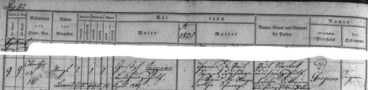 Záznam o jeho narození 9. září roku 1831 v Českém Krumlově, Horní brána čp. 16, Christophu Krippnerovi a jeho ženě Theresii, dceři Paula Stropeka (podepsán vedle je ovšem příjmením Strobek) a Margarethy, roz. Schwarzové