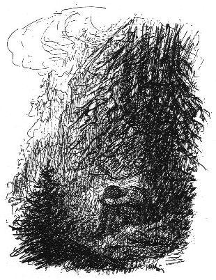 Na Šumavě, kresba