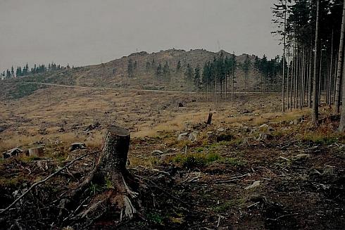 """Knížecí Stolec z Liščí louky, kde podle starého šumavského proroctví """"sjednají císařové mír a rozdělí si mezi sebe svět"""", na snímku z října 2008"""