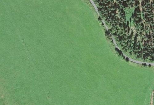 ... a poloha zaniklé chalupy čp. 88 na Pláních (Planie), kde se Kilian Nowotny narodil, na leteckých snímcích z roku 1951 a 2008