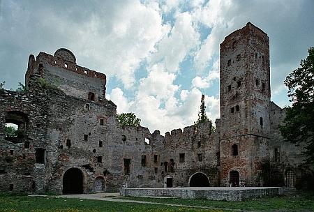 Ruiny zámku v jeho rodném Frankensteině