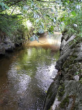 Úsek kanálu k potoku Světlá