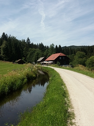 Sonnenwald (2020)