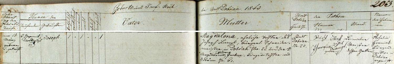 """Záznam dobřanské křestní matriky vypovídá o jeho zdejším narození dne 18. března roku 1843 svobodné matce Magdaleně, dceři krejčovského mistra Josepha Langla v domě čp. 22 (adresa zde psána """"Stadt Dobřan Nr. 22"""") ajeho ženy Magdaleny, roz. Prokopové, měšťanské dcery z Dobřan čp. 61"""