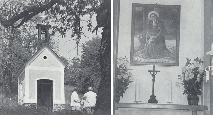 Kaple v jinak zaniklé Dolní Sněžné s obrazem sv. Anny uvnitř, obnovená na jaře 1990 (práce na opravě započaly už na podzim předešlého roku)