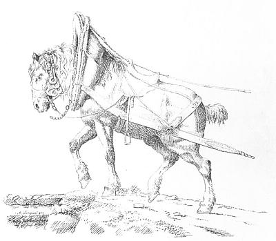 Kůň v postroji a zříceniny hradu v jeho kresbách z roku 1821