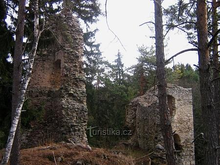 Zříceniny hradu Louzek