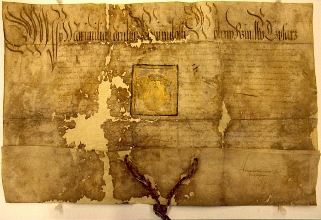 Pergamen s českým textem, jímž Maxmilián II. uděluje na prosbu Jiřího z Gutštejna Všerubům znak a povyšuje je na městečko