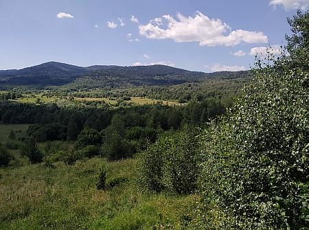 Pohled od Vražic na Vitěšovice