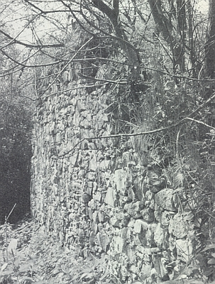 Západní zeď kostela ve Vitěšovicích na snímku z roku 1991