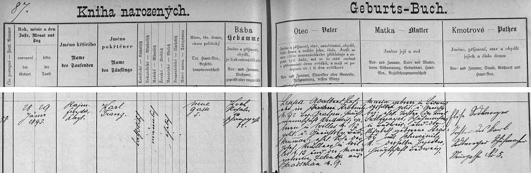 """Záznam v českobudějovické matrice dokládá, že se narodil v Nové ulici čp. 5 učiteli Adalbertu Leppovi (synovi Josefa Leppy, mlynáře v Běleni (namísto Wieles je tu chybně psáno Willes a chybí údaj, že u čp. 13 jde o """"Lojzův mlýn"""" /Loymühle či Loismühle/, a Marie, roz. Zelenkové, z národnostně českých Hradčan /dnes část obce Bošice, okr. Prachatice/) a jeho ženě Marii, roz. Sedlmayerové (dceři Karla Sedlmayera, ševce v Budějovicích, aAlžběty, roz. Stráské, z Trhových Svinů)"""