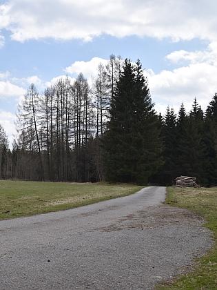 Pohled od někdejší Pestřice, zaniklá Kozí Stráň stávala v lese vpravo od elektrického vedení (viz i Helmut Nodes)
