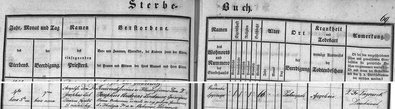 """Zápis o jeho skonu, psaný na stránkách českobudějovické úmrtní matriky zřejmě s ohledem na universalismus římskokatolické církve latinsky, takže namísto """"Altstadt"""" všude kolem čteme """"Palaiopoli"""" a příčina smrti je tu označena výrazem """"Apoplexia"""", tj. mrtvice"""